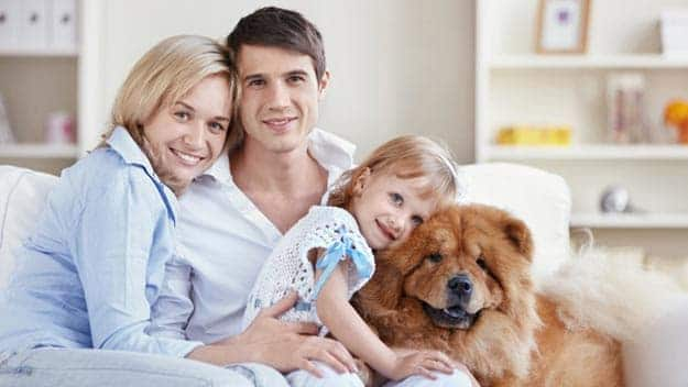Wills & Trusts dog-young-family Direct Wills Addlestone